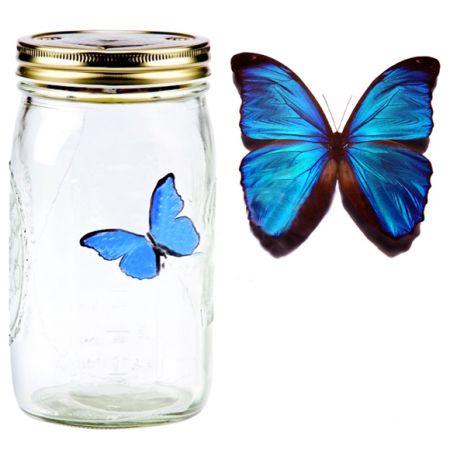 Электронная бабочка в банке Синий Морфо с подсветкой
